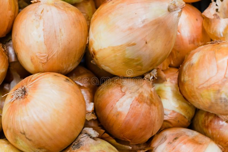 Onion for sale. Onions for sale at hypermarket, many, fresh, retail, food, vegetable, consumerism, bag, vitamins, products, abundance, display, healthy royalty free stock images
