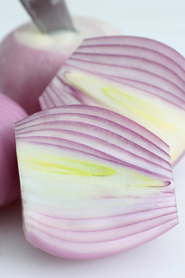 Onion sliced royalty free stock image