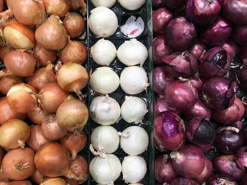 Onion Varieties in Fruit and Vegetable Shop royalty free stock photography