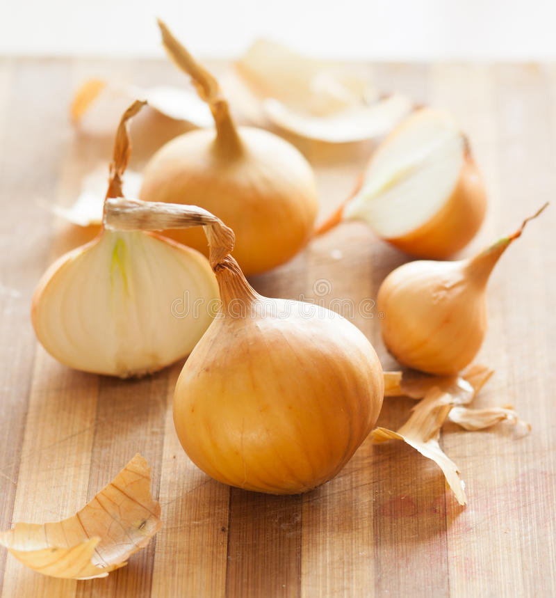 Download Onion stock photo. Image of nobody, photography, ingredient - 29962624