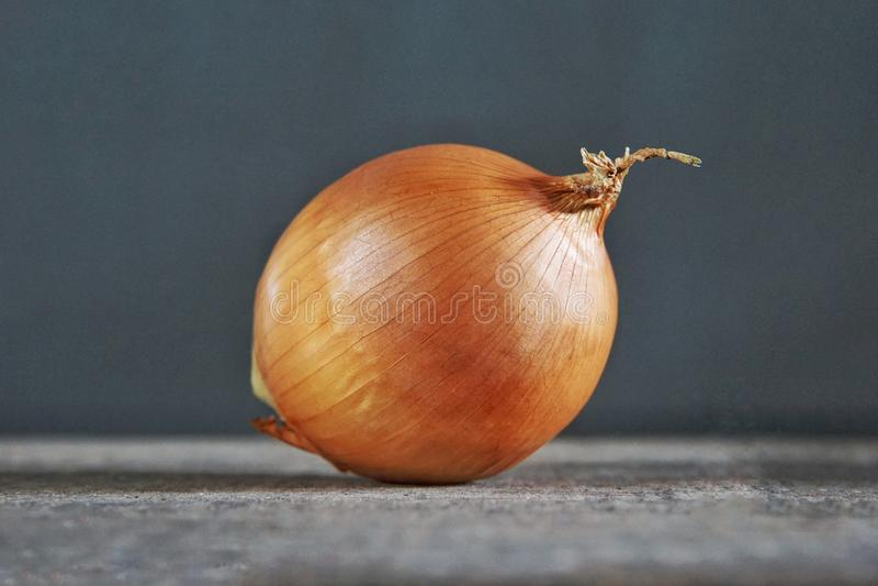 An Onion stock photos