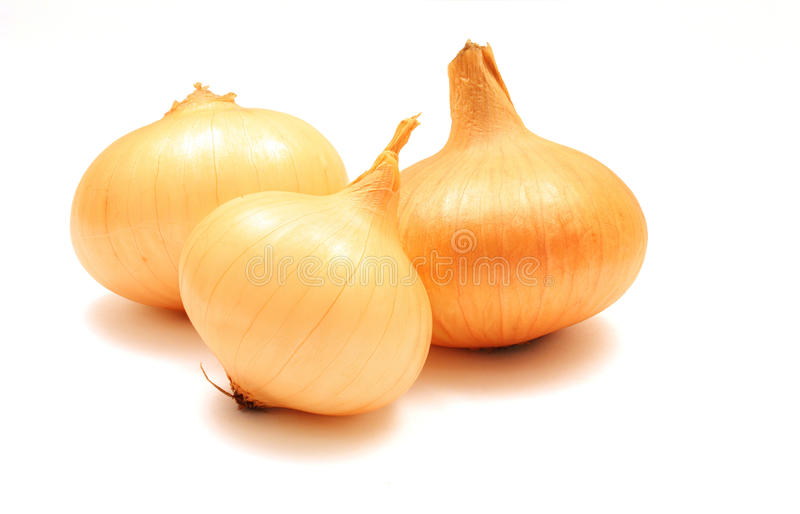 Download Onions stock image. Image of onions, isolated, yellow - 11619933