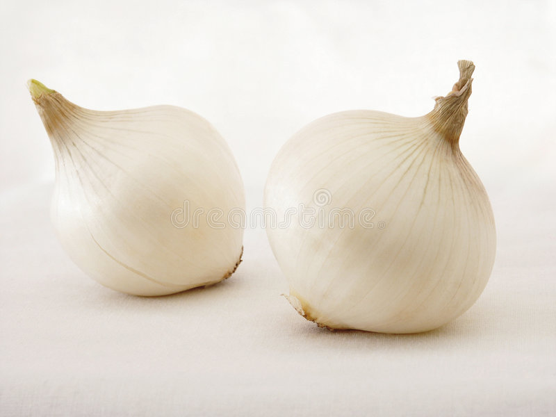 Download Onions stock photo. Image of beauty, leerics, food, fresh - 184746