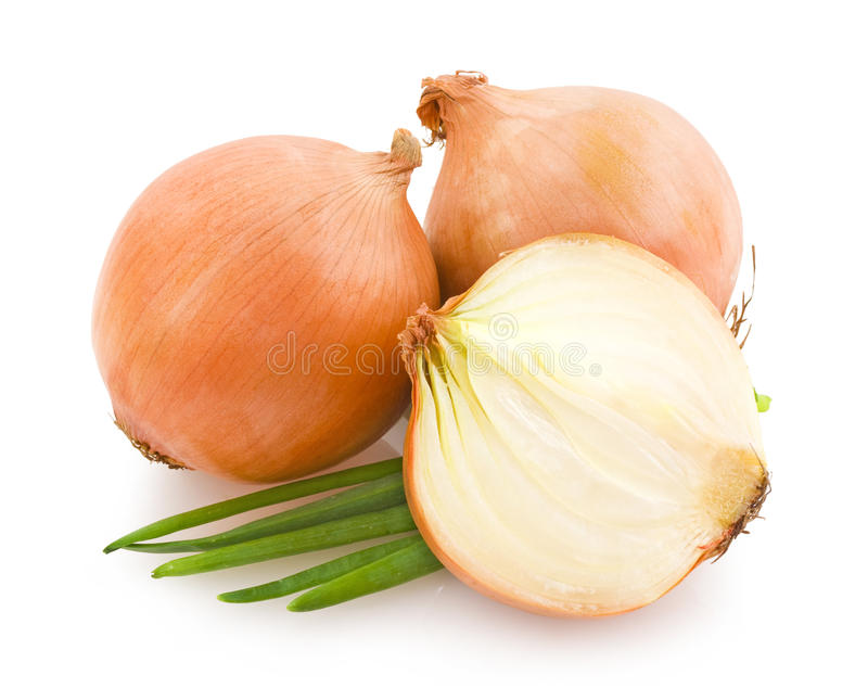 Download Onions stock photo. Image of shallot, white, onions, half - 19797346