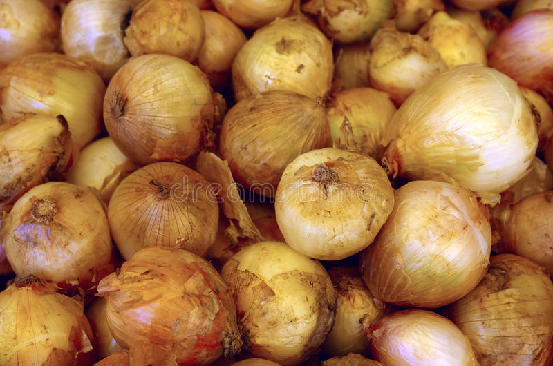 Download Onions Royalty Free Stock Photos - Image: 20137328