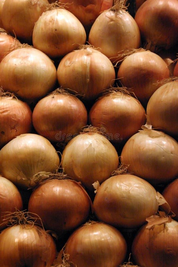 Free Onions Royalty Free Stock Photo - 262045