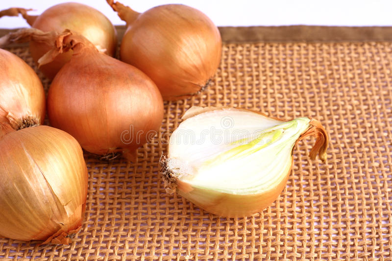 Download Onions stock image. Image of nature, food, orange, white - 28572201