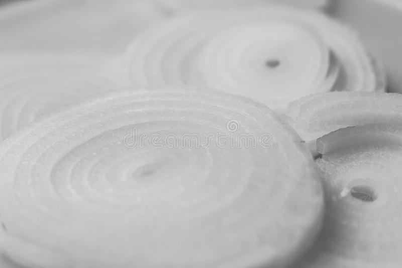 Onions in black and white royalty free stock images