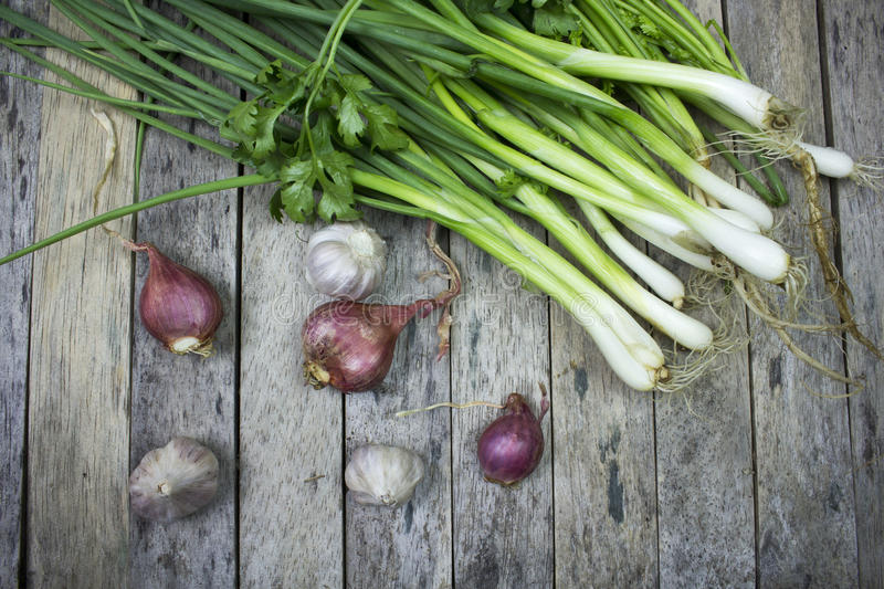 Onions garlic and welsh onion. On wood plank stock images