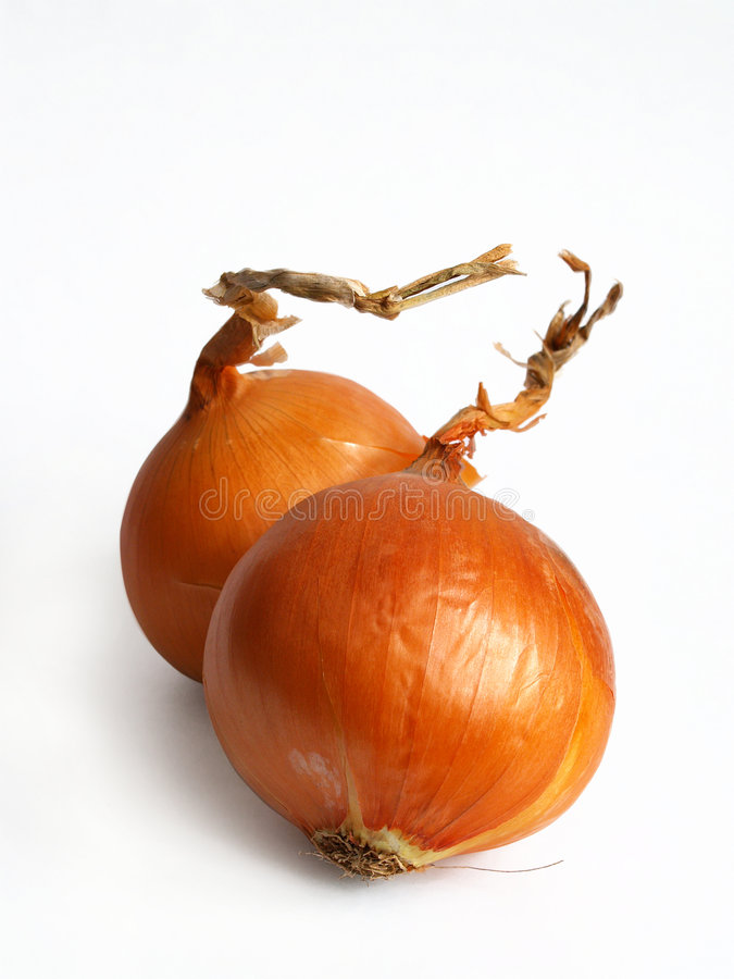 Onions isolated on white stock photo