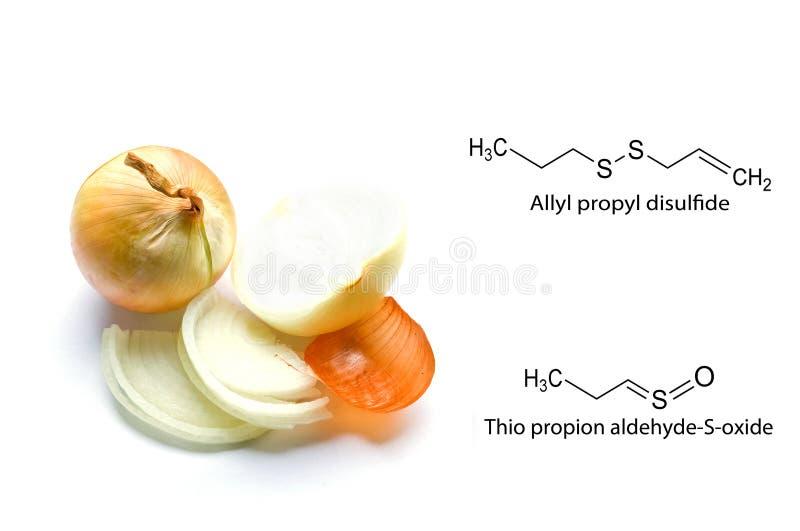 Onions. Lacrimators onions. Chemical formula. royalty free stock photo