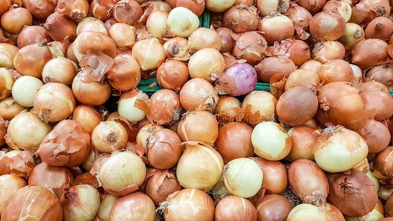 Onions on market, vegetables for healthy royalty free stock photography