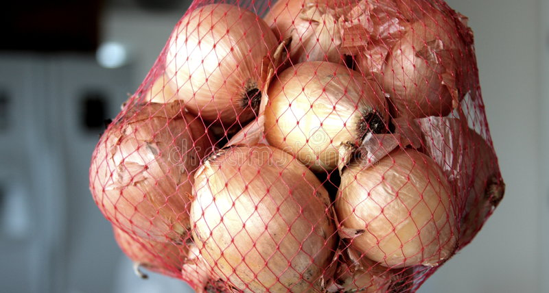 Onions in mesh bag royalty free stock photo