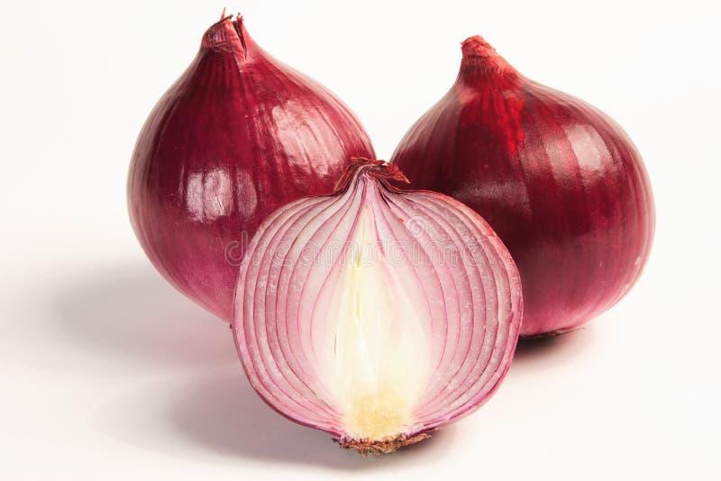 onions purple στοκ εικόνες