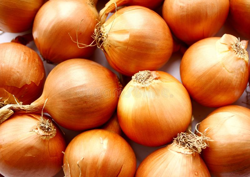 Download Onions - A Source Of Vitamins. Stock Image - Image: 12356909