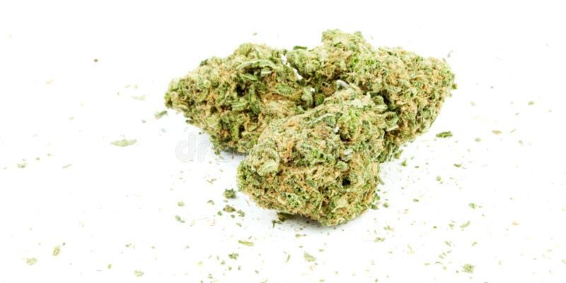 Onkruid, Marihuana royalty-vrije stock afbeelding