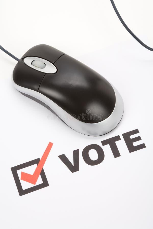 online głosujący obraz stock