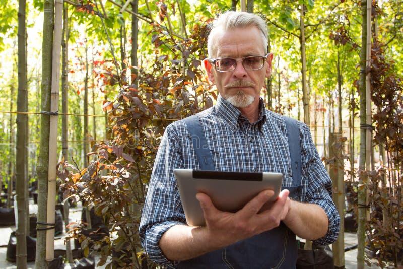 Online-lagerchef med en skrivplatta i händer på en bakgrund av ett växthus royaltyfri bild