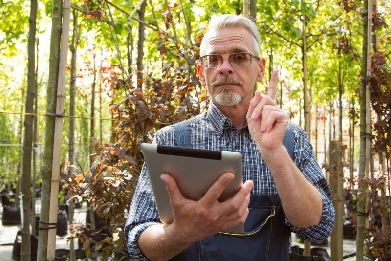 Online-lagerchef med en skrivplatta i händer på en bakgrund av ett växthus arkivbilder