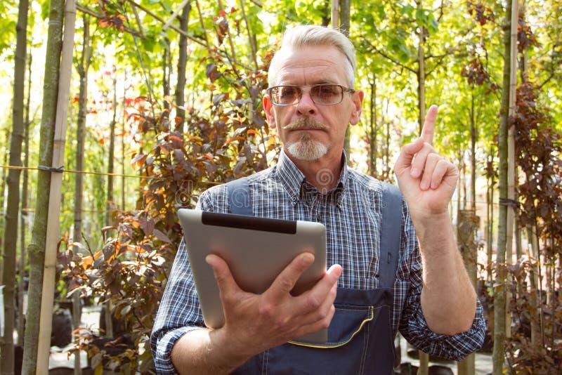 Online-lagerchef med en skrivplatta i händer på en bakgrund av ett växthus royaltyfria foton