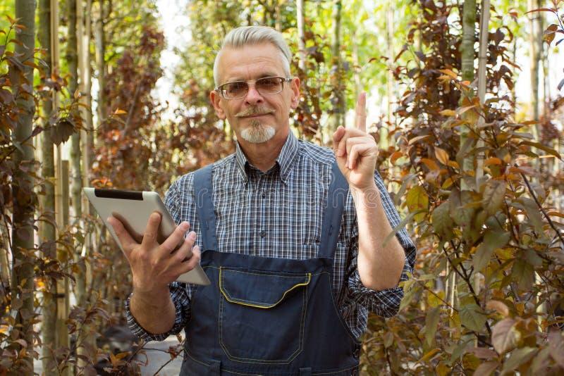Online-lagerchef med en skrivplatta i händer på en bakgrund av ett växthus arkivbild
