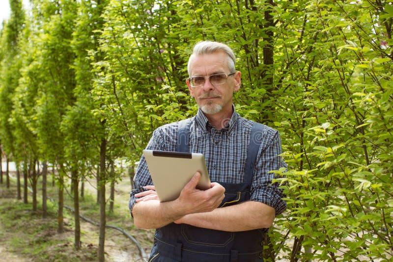 Online-lagerchef med en skrivplatta i händer på en bakgrund av ett växthus arkivfoton