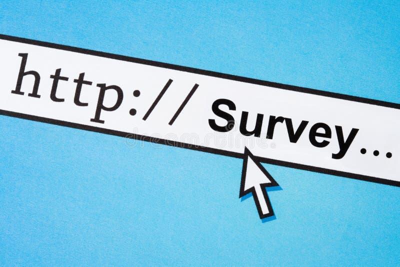 Online survey. Computer Screen, concept of online survey