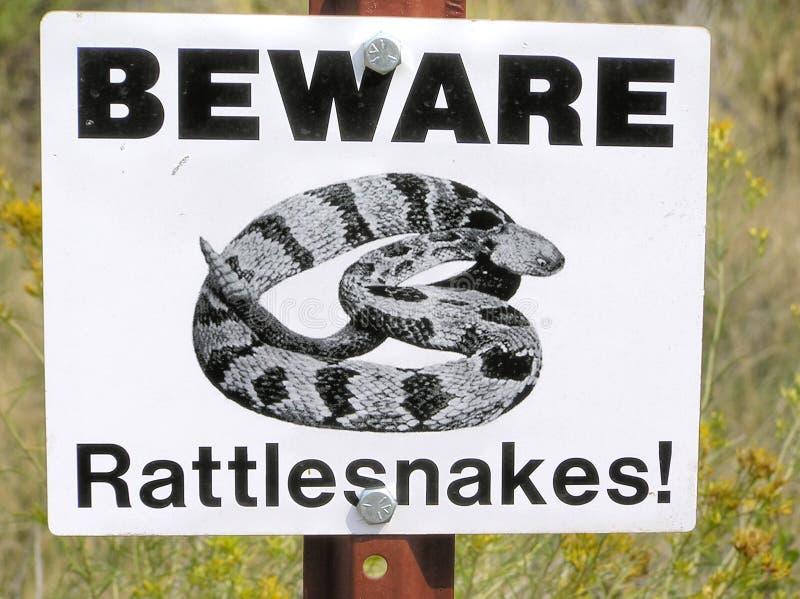 Ono wystrzega się grzechotnika kierunkowskaz w badlands, Południowy Dakota zdjęcie royalty free