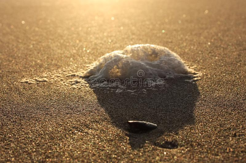 Onormalt skum på stranden förorening av havet, giftiga urladdningar salta skum som gyttras ihop på sanden av en strand på solnedg royaltyfria bilder