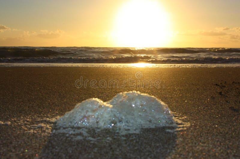 Onormalt skum på stranden förorening av havet, giftiga urladdningar salta skum som gyttras ihop på sanden av en strand på solnedg arkivbilder