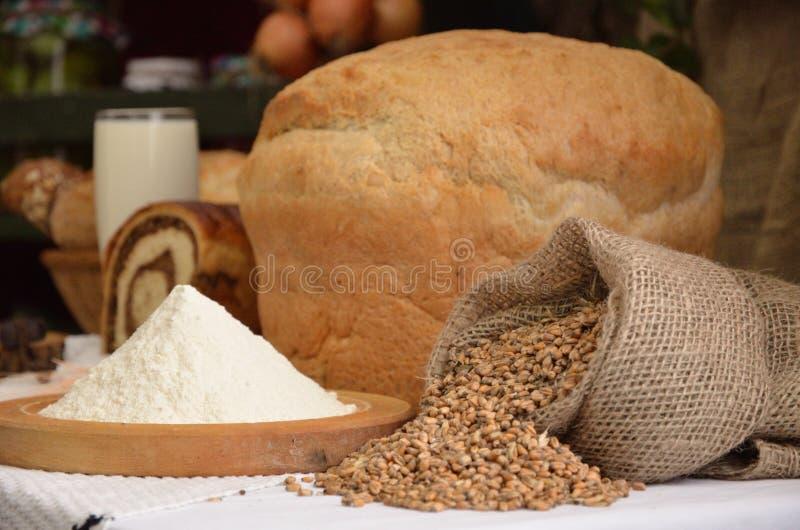 Ons dagelijks brood royalty-vrije stock foto's