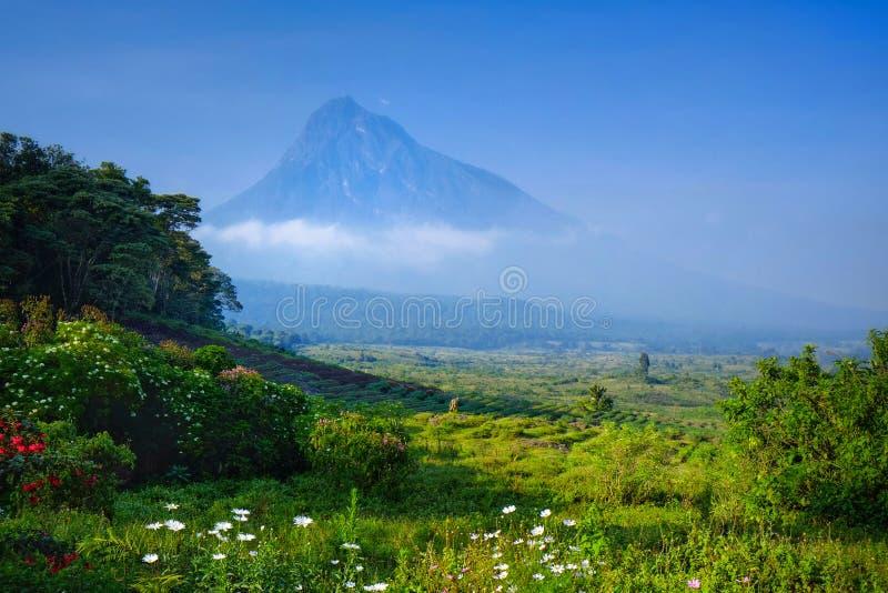 Ontbijt bij luxekamp die een vulkaan in Virunga-Na overzien royalty-vrije stock afbeeldingen