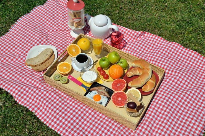 Ontbijt op een gazon royalty-vrije stock fotografie