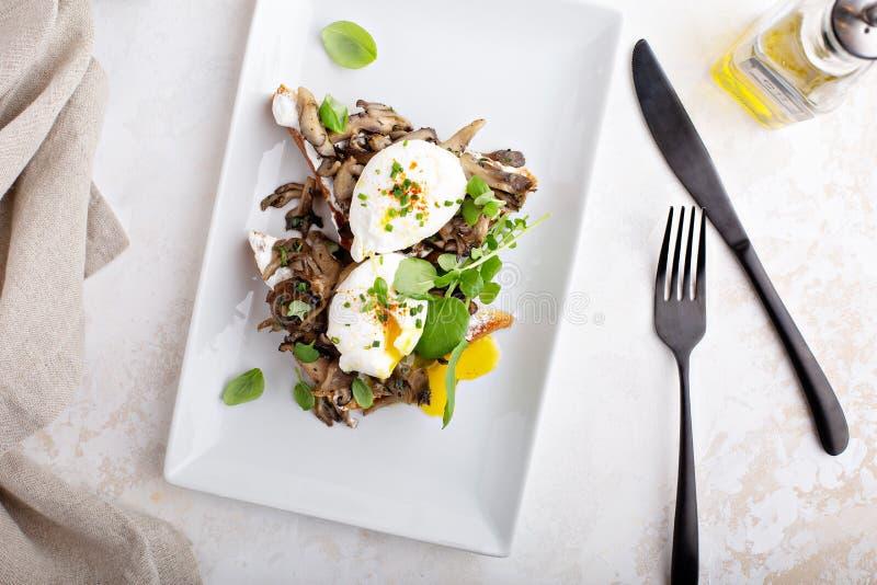 Ontbijttoost met paddestoelen en gestroopte eieren royalty-vrije stock fotografie