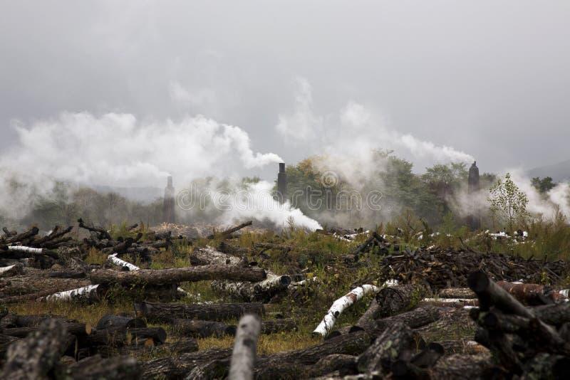 Ontbossing en milieuvervuiling royalty-vrije stock foto