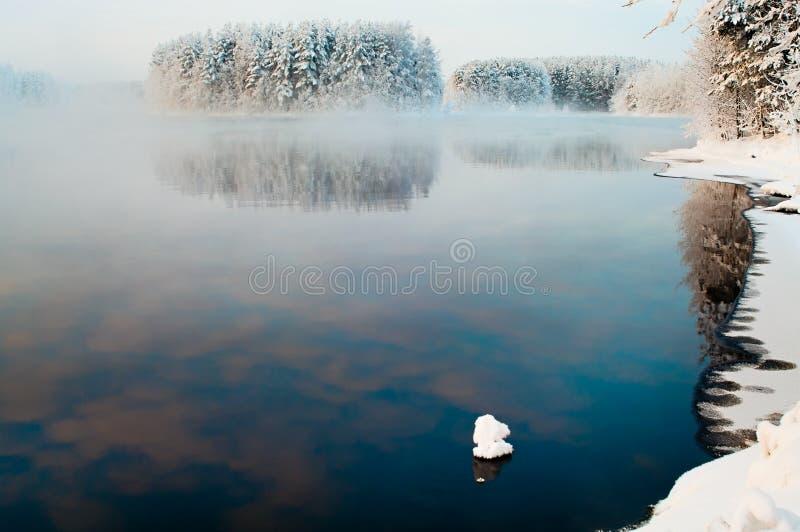 Ontdooid meer in de de winterbossen stock fotografie