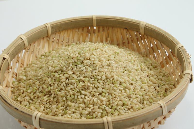 Ontkiemde Ongepelde rijst royalty-vrije stock afbeelding