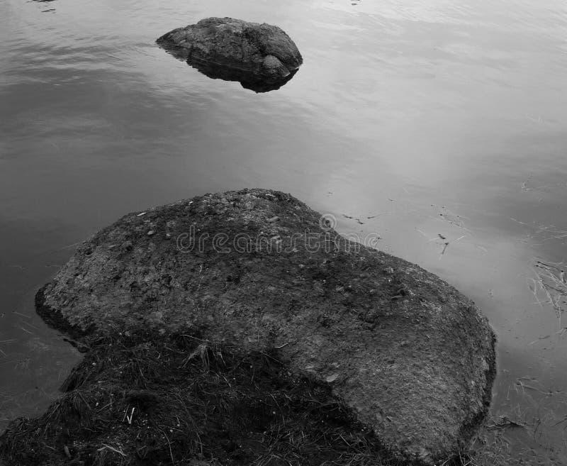 ontpitters in het meer stock afbeeldingen