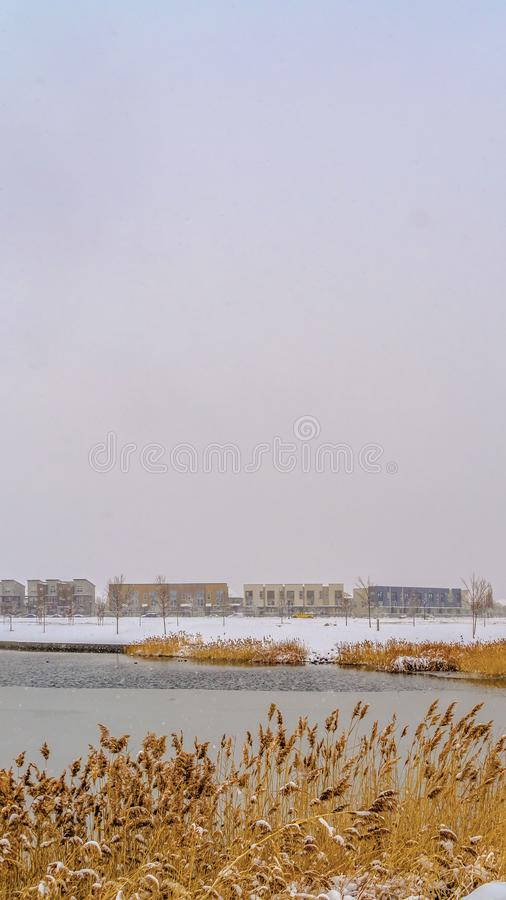 Ontruim Verticaal Panorama van een meer in Dageraad met sneeuw die de gras gevoerde kust bedekken stock fotografie