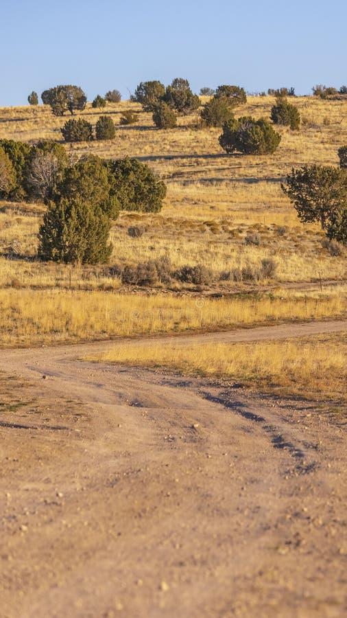 Ontruim Verticale Ongeplaveide sleep die door een enorm grasrijk terrein winden dat op een zonnige dag wordt bekeken stock foto
