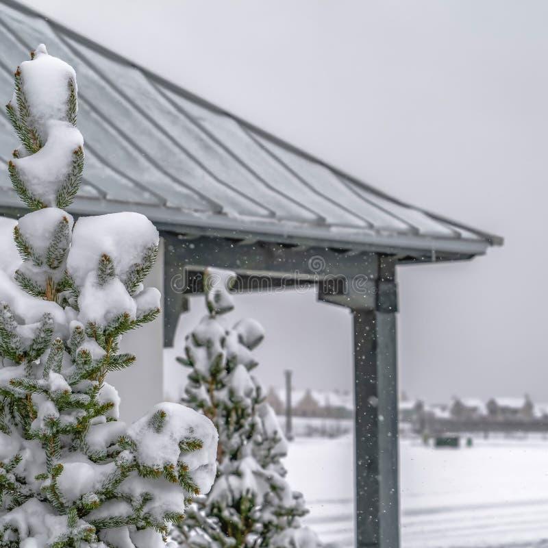 Ontruim Vierkant Sneeuwdieboom en paviljoen in Dageraad Utah op een koude de winterdag wordt bekeken stock fotografie