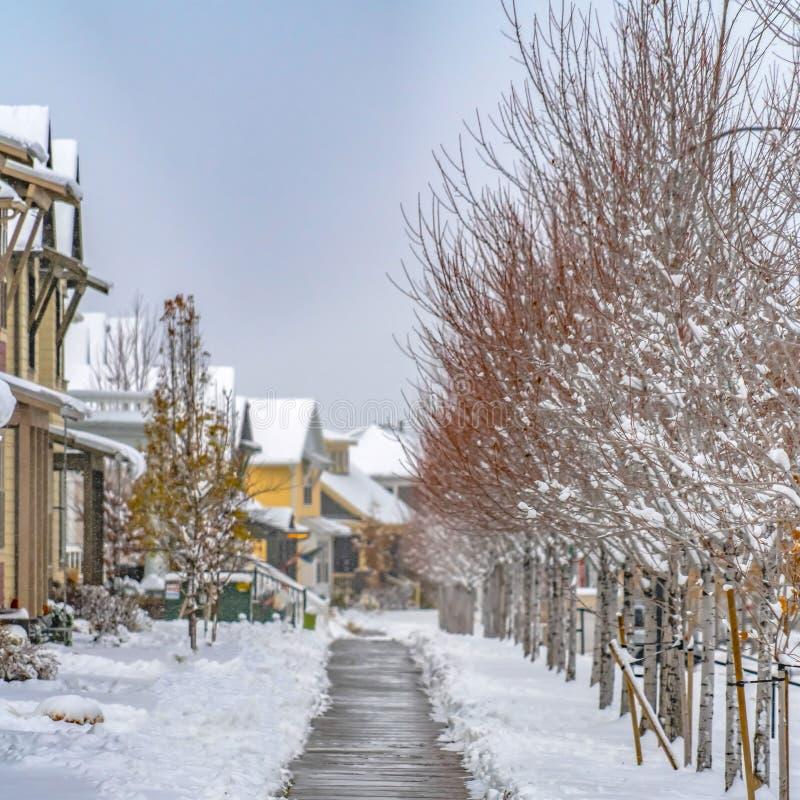 Ontruim Vierkante Houten weg amid bomen en huizen in Dageraad Utah dat in de winter wordt bekeken stock fotografie