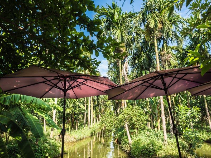 Ontspan koffie en woestijnbar naast kanaal in palmtuin royalty-vrije stock afbeeldingen