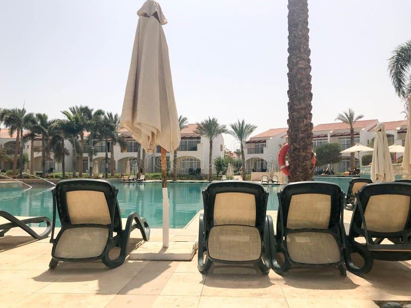 Ontspan pool met duidelijk blauw water met sunbeds voor het zonnebaden met zonparaplu's tegen de achtergrond van groene palmen en stock foto's