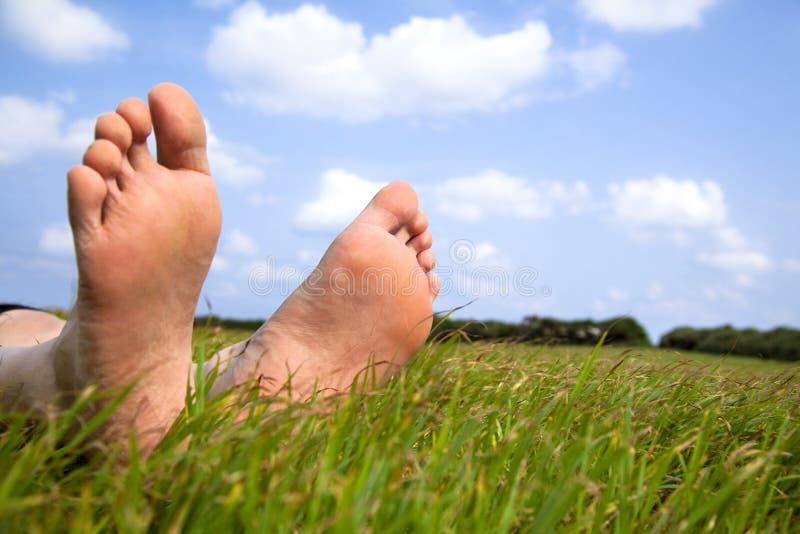 Ontspannen voet op gras stock fotografie