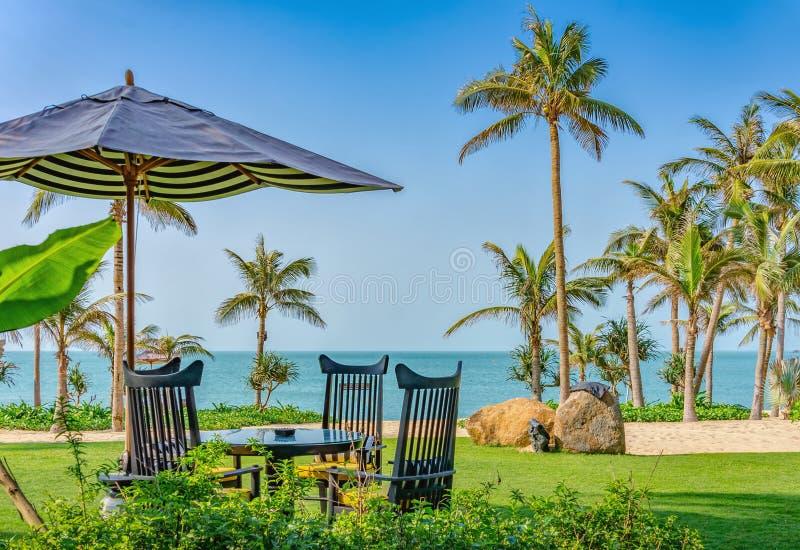 Ontspannend tropische strandvakantie - deckchairs, paraplu, palmen royalty-vrije stock fotografie