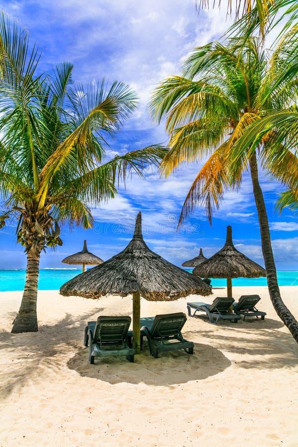 Ontspannend tropische vakantie in exotisch paradijs - het eiland van Mauritius royalty-vrije stock foto's
