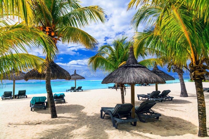 Ontspannend tropische vakantie in exotisch paradijs - het eiland van Mauritius stock foto
