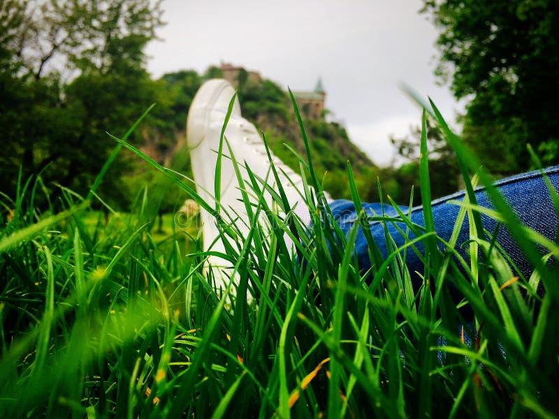 Ontspanning in het gras stock foto