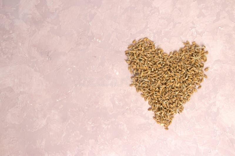 Ontsproten tarwe in vorm van hart op een lichte achtergrond gestemd royalty-vrije stock fotografie